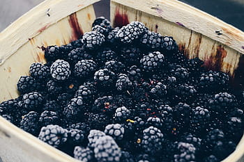Blackberries in heavy syrup